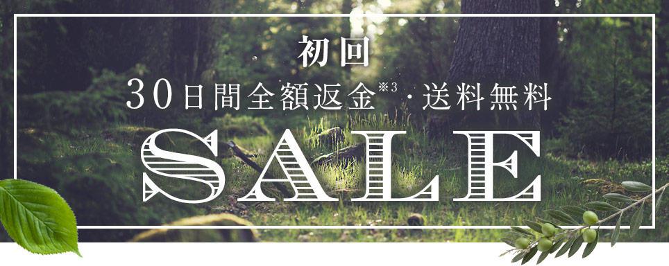 pic_sale.jpg